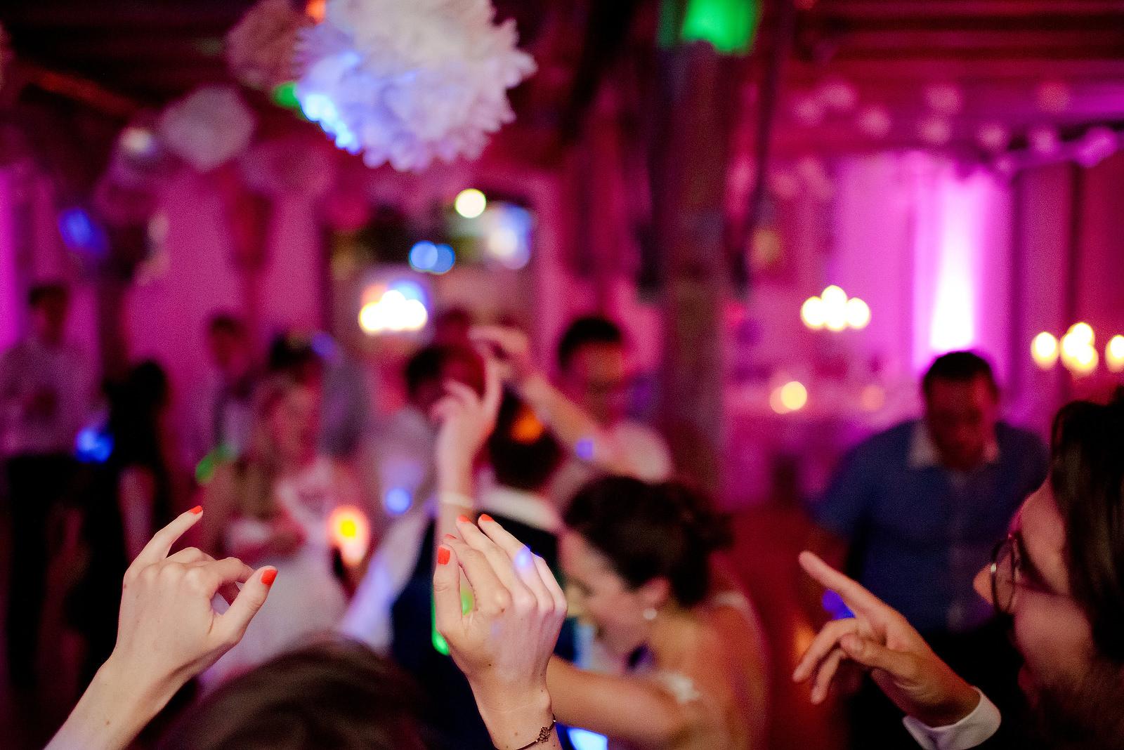Fotograf Konstanz - Hochzeitsfotograf Bodensee Zollhaus Ludwigshafen Hochzeit Konstanz EFP 147 - Hochzeitsreportage im Zollhaus in Bodman-Ludwigshafen, Bodensee  - 250 -